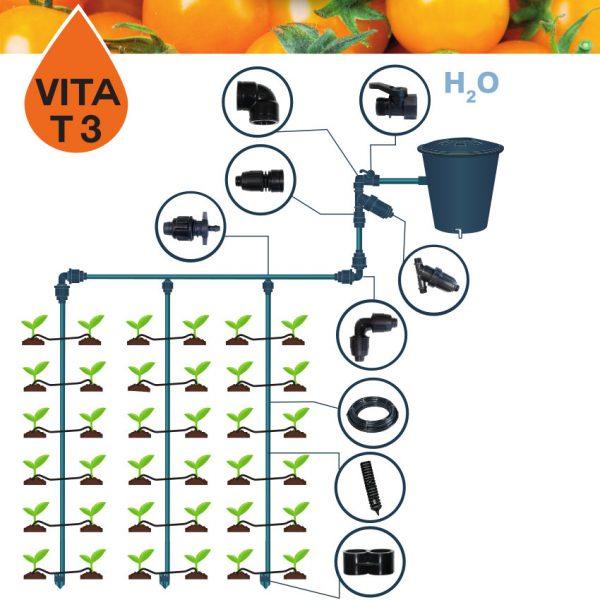 Vita T3